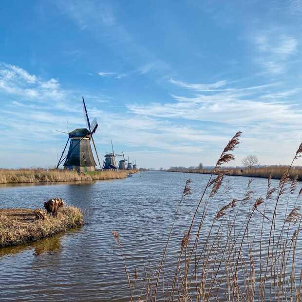 De molens in Kinderdijk bezoeken doe je zo
