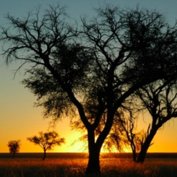 Nu al een hit: SBS6's Welkom bij de Kamara's in Namibië