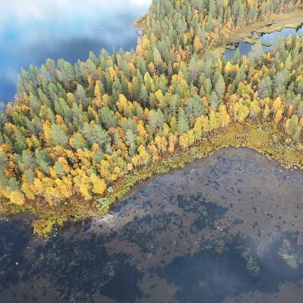 Herfst in Noord-Finland: deze beelden bewijzen hoe mooi dat is!