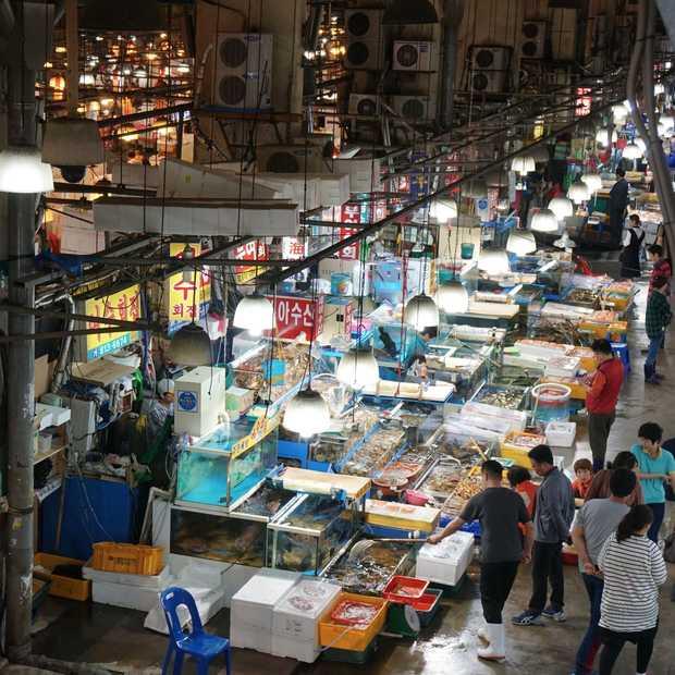 De Noryangjin Vismarkt in Seoul: voor wie echt van vis houdt
