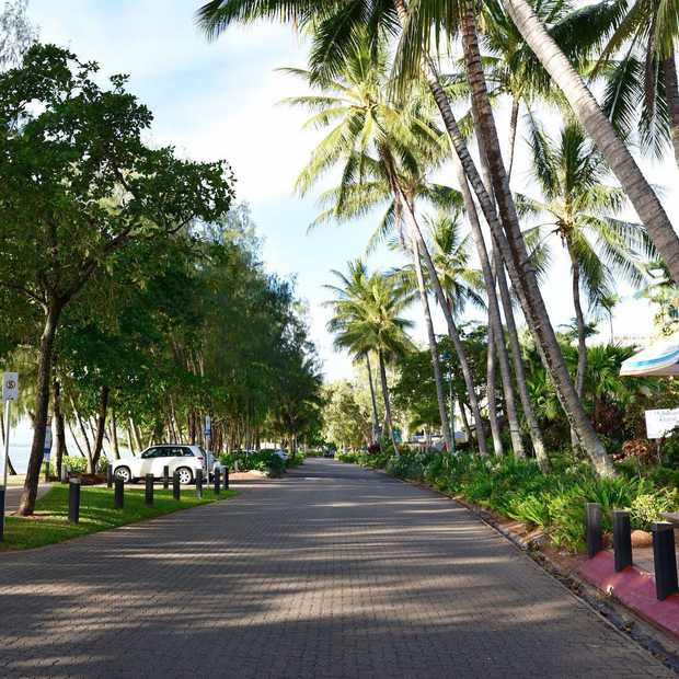 Ontdek Palm Cove, het palmbomenparadijs van Australië