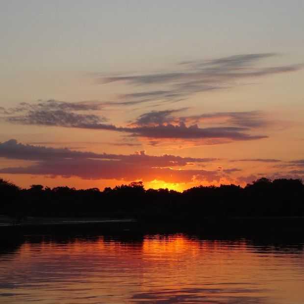Pantanal: een droombestemming in Brazilië