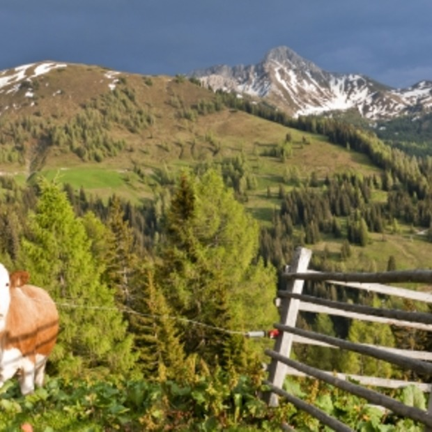 Natuur, wandelen en eten in het Salzburgerland (Oostenrijk) [Deel 1]