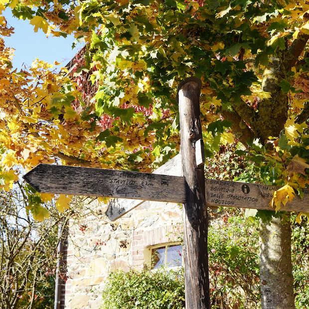 Een roadtrip langs de mooiste plekjes in de Belgische Ardennen