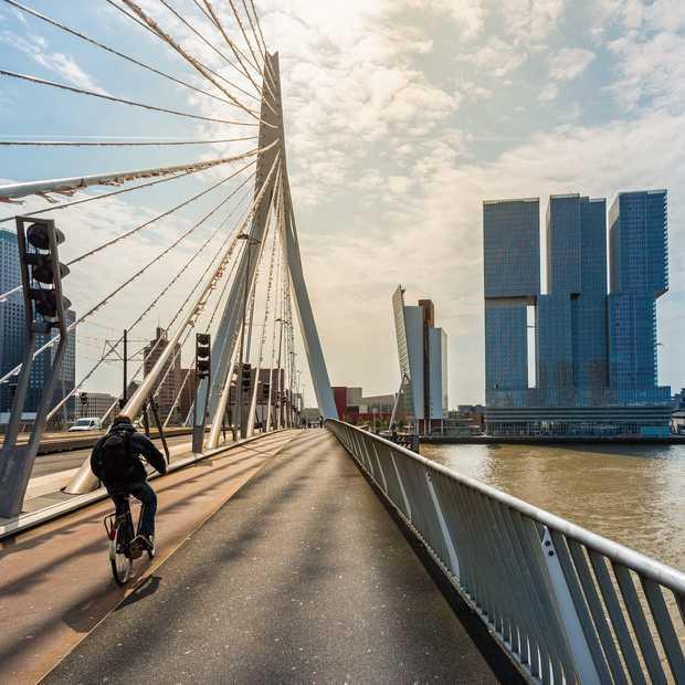 Rotterdam insider tips: zien en doen in het Scheepvaartkwartier
