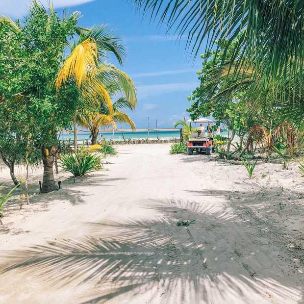 Dit is de ideale route voor een roadtrip door Yucután in Mexico