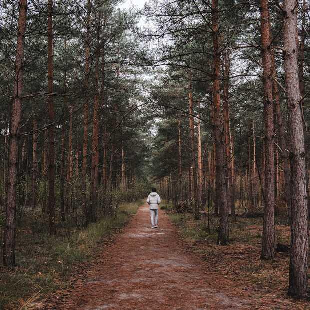 Wandel het Smokkelpad op de Strijbeekse Heide