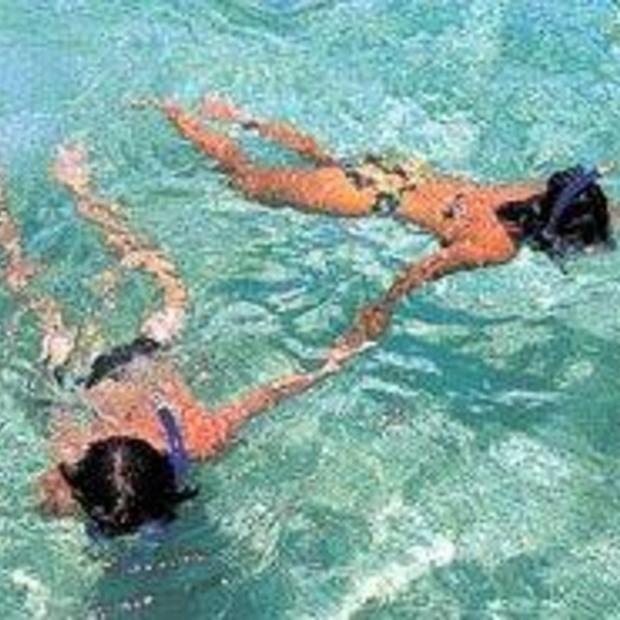 De mooiste snorkel- en duikbestemmingen