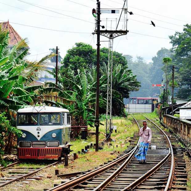 Het beste van Sri Lanka: 8 onvergetelijke must sees