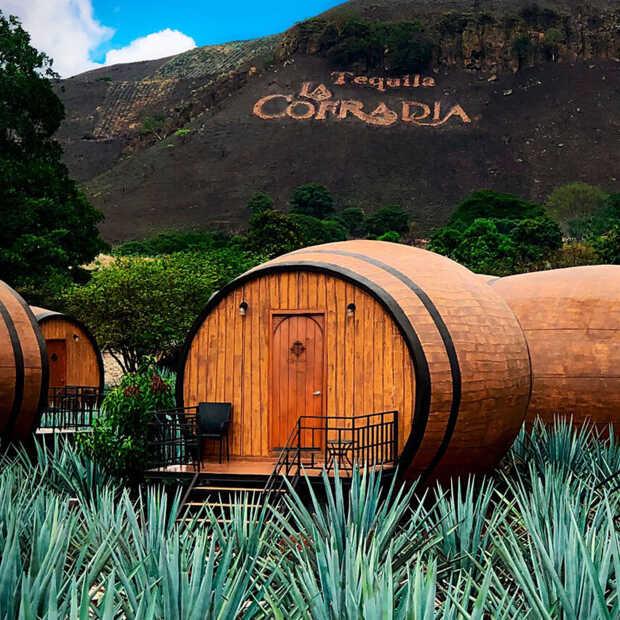 Overnachten in een tequilavat en tequila drinken direct bij de bron