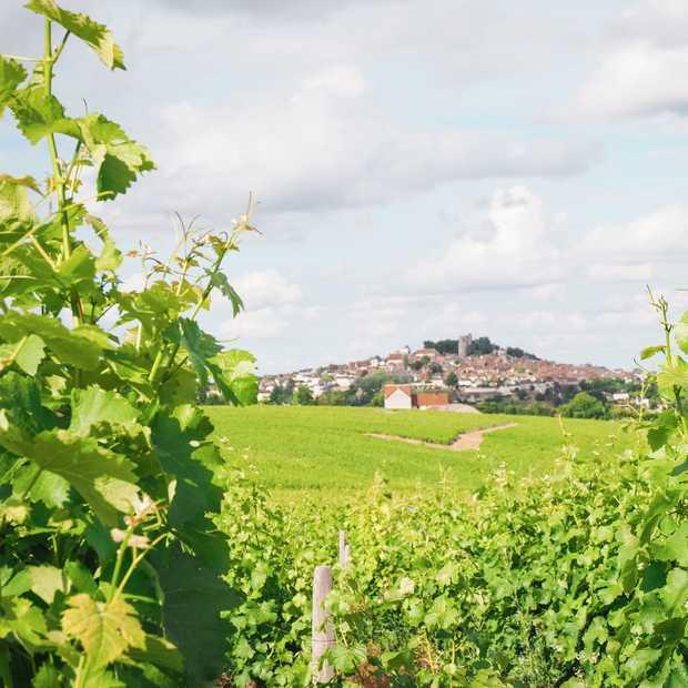 5 tips voor een onbezorgde zomer in Frankrijk