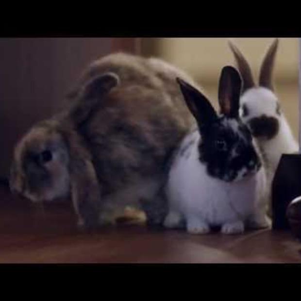 Video: Hotelketen Ibis lanceert super zacht slapen, met 'Sweet Bed'