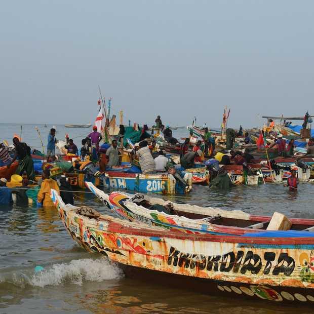 Senegal: een kleurrijke kennismaking met Afrika!