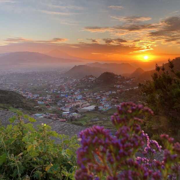 9 dingen die een vakantie naar Tenerife nóg leuker maken!