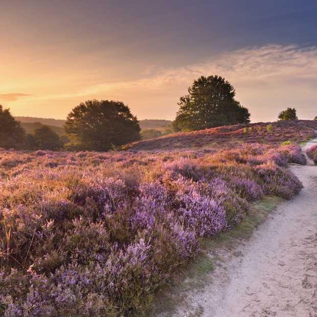 Vijf leuke ideeën voor een weekendje weg in Nederland
