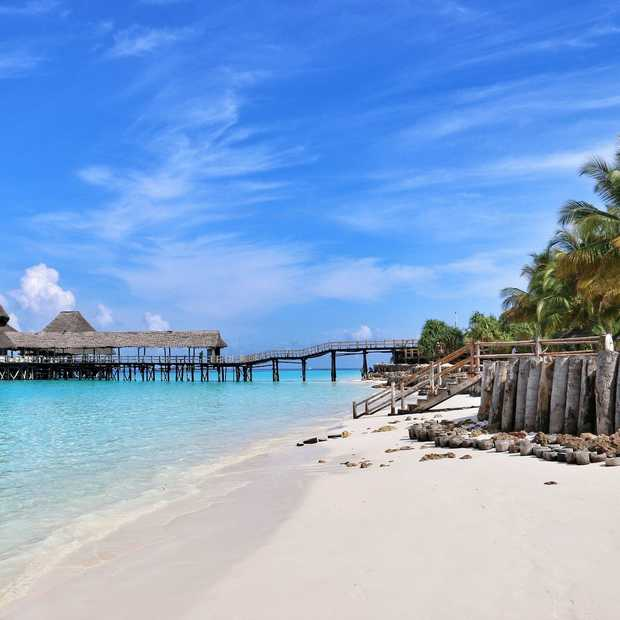 Zanzibar: nagenieten van een safari op dit zonnige eiland