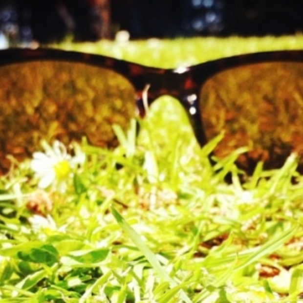 KNMI: 2013 was een warme, droge en zonnige zomer met veel mooi-weerdagen
