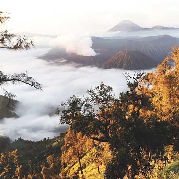 Doen op Java: zonsopgang tour naar Mount Bromo