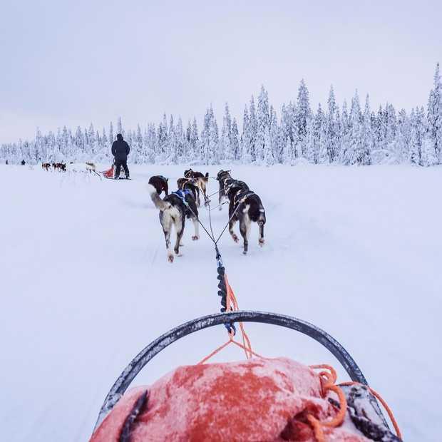 Het mooiste van Zweeds Lapland in 40 foto's
