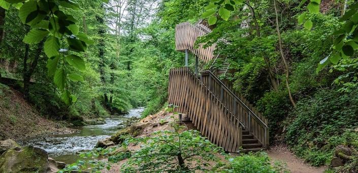 Ontdek het Mullerthal: het indrukwekkende groene hart van Luxemburg